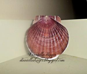 Sea Shell Journal with Coptic Stitch Binding